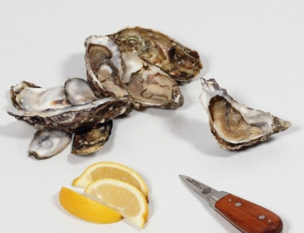rory_oconnor_oyster_knife_arrangement_02a_homepage-medium-square